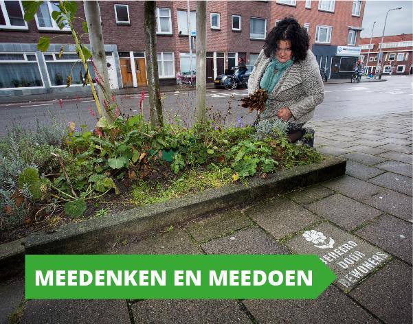 Gemeenteraadsverkiezingen programma GroenLinks Utrecht - Meedenken en Meedoen